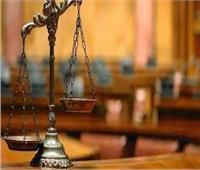 اليوم.. الاستماع للشهود في محاكمة 22 إرهابيا فىقتل مواطنين وتعذيبهم