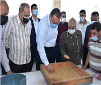 محافظ الشرقية يتفقد القمح بصومعة «القرين» للتأكد من خلوه من الشوائب