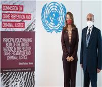 والي ومروان يناقشان تعاون الأمم المتحدة مع مصر في مكافحة الجريمة