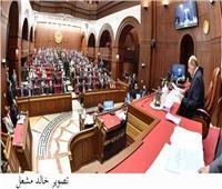 نائبة مجلس الشيوخ: مبادرة السيسي دليل قاطع على دعم القضية الفلسطينية