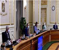 وزيرة الصحة: شحن المادة الخام اللازمة لتصنيع لقاح «سينوفاك» الصيني