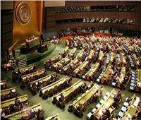 المجموعة العربية بالأمم المتحدة: لا حل للقضية الفلسطينية إلا بإنهاء الاحتلال