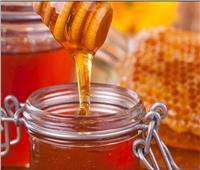 البحوث الزراعية: 2800 طن حجم صادرات مصر من العسل في 2020 .. فيديو