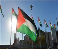 الأردنيون يحتشدون تعبيرًا عن فرحتهم بنصرة الفصائل الفلسطينية  فيديو