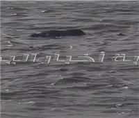 العثور على جثة طافية على النيل بركن فاروق بحلوان فيديو