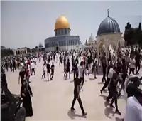 اشتباكات عنيفة بين الشرطة الإسرائيلية وفلسطينيين بمحيط «الأقصى»   فيديو