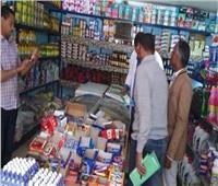 ضبط 22 قضية في حملة تموينية على الأسواق في أسوان