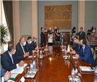 «شكري» ووزير خارجية قبرص يبحثان التعاون الثنائي والقضايا الإقليمية