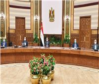 الرئيس السيسي يطلع على عرض متكامل لمحاور مشروع تطوير قرى الريف المصري