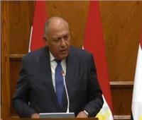 وزير الخارجية: مصر تعمل على إنهاء معاناة الشعب الفلسطين