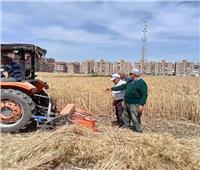 محافظ الشرقية: تطبيق الإجراءات الاحترازية بشون القمح