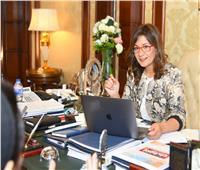 وزيرة الهجرة لممثلي «حياة كريمة»: نتعاون لإدماج جهود المصريين بالخارج