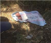 العثور على طفل حديث الولادة بـ«المحلة»