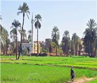«أبو العربى» تدعم قرى الريف الأكثر فقرا