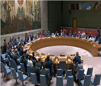 مجلس الأمن يمدّد عاماً حظر الأسلحة المفروض على جنوب السودان