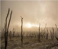 البرازيل تتأهب لأسوأ موجة جفاف منذ 91 عام