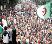 حراك سياسي وشعبي في الجزائر قبل أسبوعين من الانتخابات التشريعية