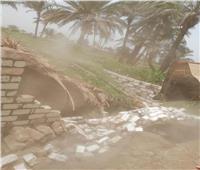 إزالة 8 حالات تعدي علي أراضي حماية النيل بالمنيا| صور