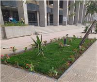 جامعة حلوان تشهد أعمال تطوير وتشجير داخل الحرم الجامعي