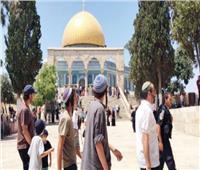 مستوطنون يقتحمون باحات المسجد الأقصى ويجرفون أراضي بالأغوار