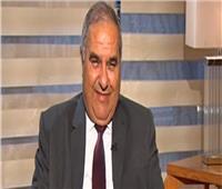 رئيس المحكمة الدستورية: الموافقة على إنشاء مدينة العدالة بالعاصمة الإدارية
