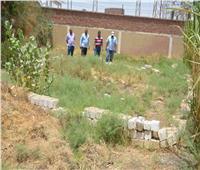 إزالة ٣ حالات مخالفة للبناء على أراضٍ زراعية بإسنا