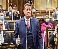 برلمانى: السيسي ينتصر للمرأة فى قضية الالتحاق بالنيابة العامة ومجلس الدولة