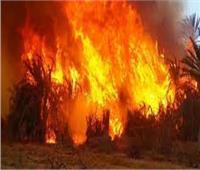 مصدر: مشرف بـ«المؤسسة العقابية» أغلق الباب على الأطفال بعد نشوب الحريق