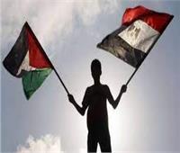 محلل فلسطيني: قرار السيسي بإشراف مصر على إعمار غزة رسالة لدولة الاحتلال  فيديو
