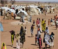 الأمم المتحدة: تحذر من مجاعة في إقليم تيجراي الإثيوبي