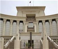 3 يوليو.. الحكم في دعوى عدم دستورية حظر تشغيل غير الأعضاء بالمهن التمثيلية