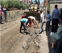 البيئة: حملة لاستكمال أعمال تطوير قرية «صفط تراب» ضمن «اتحضر للأخضر» بالغربية