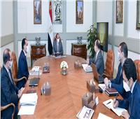 الرئيس السيسي يوجه بتعزيز مشاركة القطاع الخاص في النمو الاقتصادي