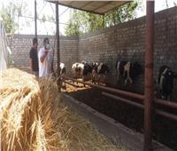 حملات مسح شامل مجاني لأمراض الثروة الحيوانية بالدقهلية