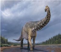 «تيتان الجنوبي».. أكبر ديناصورات العالم   صور