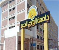 اعتماد اللائحة المالية للمستشفى التعليمي للطب البيطري بجامعة الوادي الجديد