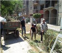حملات لتحسين مستوى النظافة ورفع كفاءة الحدائق والإنارة بشوارع الدقهلية