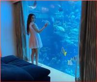 نسرين طافش تُداعب الأسماك من غرفة نومها | فيديو