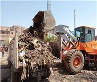 رفع كفاءة النظافة في منشأة القناطر بالجيزة | صور
