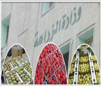 الزراعة: ارتفاع معدلات التصدير بنسبة 20% في مصر ..فيديو