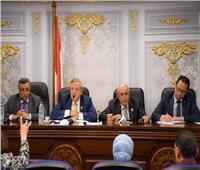 التخطيط تستعرض جهود تطبيق البرامج والأداء أمام مجلس النواب