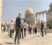 توتر في المسجد الأقصى.. ودعوات للتصدي لاقتحام «بن غبير»