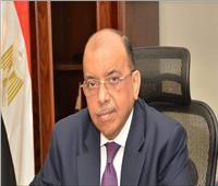 وزير التنمية المحلية يتابع البرنامج التدريبي لشباب البرنامج الرئاسي بالمحافظات
