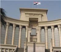 نائب الدستورية: إفريقيا شريك استراتيجي والتاريخ شاهد على دور مصر بالقارة