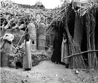 فلاح يتزوج حماته.. والسر «علي بن أبي طالب»