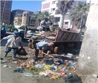 رفع 172 طن قمامة من شوارع المحلة