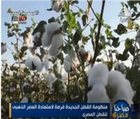 عبد الحكيم: الدولة تسعى لزيادة المساحات المزروعة من القطن وتطوير المحالج  فيديو