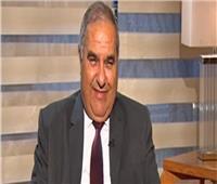 رئيس «الدستورية العليا»: الإرهاب يأكل الأخضر واليابس ويعيق تنمية الدول