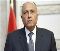 شكري يطلع نظراءه العرب على جهود مصر لحل ازمة سد النهضة