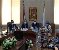 شعراوي يشهد توقيع بروتوكول بين محافظي الغربية والوادي الجديد